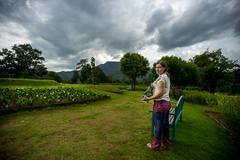 Hagiti the explorer #2 (Aviram Ostrovsky) Tags: garden queen explorer sirikit hagiti bothanic mai chiang thailand