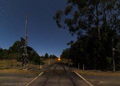 Brown's Crossing,NSW (Photography By Tara Gowen) Tags: traintracks railcrossing night stars tracks longexposure australia eungai nikon tokina1116mm wideanglelens moonlight trees blue trains