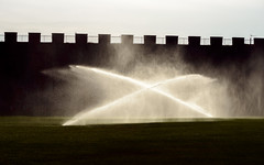 (lxpro) Tags: architecture events italy nature pisa places season terrain time toscana water building plant summer vacation               it