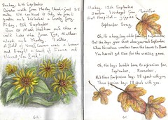 Sunflowers and September - EXPLORED (Hornbeam Arts) Tags: sketch art watercolour
