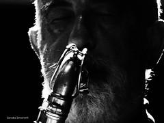 I Musici 2 (sandra_simonetti88) Tags: imusici guccini francescoguccini sax suonare play toplay playing musica music bn bw portrait portraits ritratto ritratti primopiano primissimopiano strumentomusicale musicalinstrument strumentoafiato