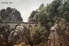 Basteibrcke / Bastei bridge (UlvargHS) Tags: bastei basteibrcke elbsandsteingebirge sachsen dresden brcke filter alt bume felsen stein ulvarg sony