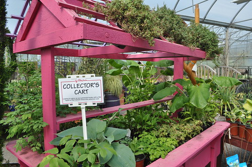 5 Great Gardening Centres - Minter Gardens Country Store