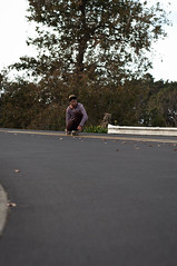 Tucking Knees (ArloCoops) Tags: road newzealand leaves contrast nikon afternoon forrest skateboarding dusk stripes hill auckland wilderness curve bomb boosting naturistic flatspots arlocoops topothin