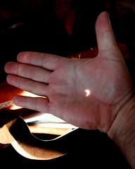 eclipse in my hand (artolog) Tags: shadow eclipse hand pinhole crescent 2012 annular