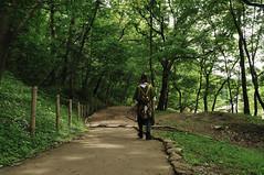 ムーミン谷の世界を再現したあけぼの子どもの森公園の画像3