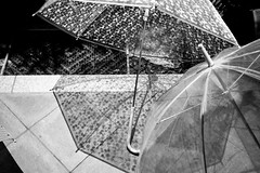 open umbrella (yu_DP+) Tags: bw raw snapshot rangefinder adobelightroom leicam9 cbiogont2835