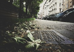 (ikhals) Tags: vsco vscocam iphone iphone4 iphoneonly vanishingpoint fartoodope city urban sidewalk streetphotography building buildings perspective leaf leaves tree trees dry green turin torino italy italia