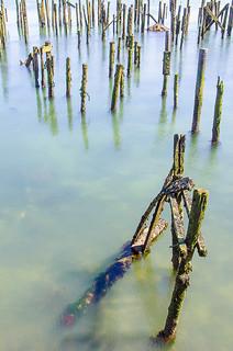 {Harbour Remnants}FCC108