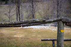 Pasamanos (SantiMB.Photos) Tags: 2blogger 2tumblr 2ig banister pasamanos dof girona pirineos ripolls sal18250 valldecamprodon geo:lat=4231251487 geo:lon=238505119 geotagged invierno winter camprodon cataluna espaa esp