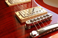 Cort M600 (oppeslife) Tags: cort m600 music guitars electric bridge magnetichs saddle