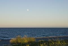 18071601 Newcastle (Philip D Ryan) Tags: ireland countywicklow newcastle newcastlebeach irishsea skyscape eveninglight sunset fullmoon moon moonrising seascape