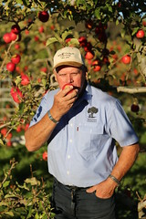 IMG_6004 (mavnjess) Tags: 28 may 2016 harvey edward giblett newton orchards manjimup harveygiblett newtonorchards cripps pink lady crippspinklady popaharv eating apple crunch crunchy biting apples pinklady pinkladyapple harv gibbo orchard appleorchard orchardist