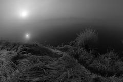 of light and shadow worlds III (Mindaugas Buivydas) Tags: lietuva lithuania nemunas nemunasdelta delta winter december frost cold mood moody fog mist bw sadnature dark darkness mystery river fogandsun