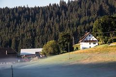 IMG_2224 (marc_henkel) Tags: nebel schluchsee schwarzwald urlaub urlaub2016 badenwrttemberg deutschland de