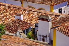 125 - Obidos les toits (paspog) Tags: obidos toits roofs decken tuiles tiles portugal villagemdival medievalvillage