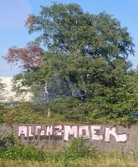 - (txmx 2) Tags: hamburg graffiti trainwindow whitetagsrobottags whitetagsspamtags