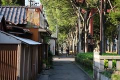 DSCF6429 (keita matsubara) Tags: ohmiya saitama japan hikawasando