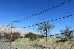 Jebel Hafeet District Al Ain UAE (breedlux) Tags: fence barbed