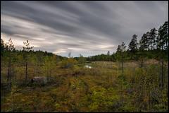 Sandasen (Jonas Thomn) Tags: sandsen nd400 4min longexposure lngexponering mosse moss swamp grs grass skog forest lake sj landskap landscape sky himmel trd trees tracks spr