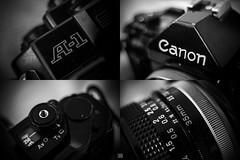Canon A-1 (Carra.Dfgdef) Tags: canon 7d eos canoneos7d canon7d canona1 a1 fd 35mm f35 canonfd35mmf35sc sc dslr slr film filmcamera macro closeup extensiontube 11mm 11mmextensiontube m42 pentacon electric 28 29mm pentaconelectric2829 bw byn blackandwhite blancoynegro biancoenero monochrome