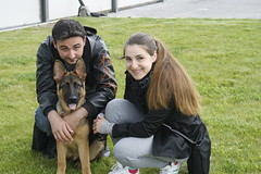 Family (DanielOssino_EducatoreCinofilo) Tags: cane cani dog dogs german shepherd germanshepherd pastore tedesco puppy puppies puppyclass cucciolo cuccioli sweet dolce amore love lovely cute carino carina famiglia family together insieme forever persempre 4ever 3