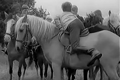 Why did the pony move off (theirhistory) Tags: boy child kid music film pony riding friends germany german holland netherlands heintje leatherridingboots jumper jodhpurs breeches rider horse