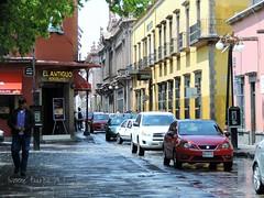 Av. Ignacio Aldama (vonne) Tags: calle avenida aldama centro san luis potosi historico slp mexico travel street city