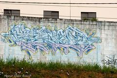 _DSC6001 (Mario C Bucci) Tags: saida fotografia pacheco paulo tellis mario bucci hugo shiraga fabio sideny roland grafites volu ii