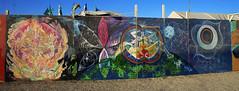 (Emptiness Of Light) Tags: mural center camp flower of life vagina art painting earth rainbow birth cosmic burning man nv nevada 2011