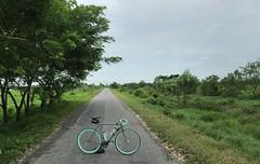 Myanmar, Ayeyarwady Region, Pyapon District, Kyaiklat Township, Hle Seik Village Tract (Die Welt, wie ich sie vorfand) Tags: myanmar burma ayeyarwady irrawaddy irrawaddydelta delta bicycle cycling ayeyarwadyregion pyapondistrict pyapon kyaiklattownship kyaiklat hleseik surly steamroller