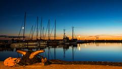 Am Poller (Panasonikon) Tags: blauestunde bluehour hafen harbour blau orange boote schiffe mond moon himmel sky dmmerung lumixdmcg70 mzuiko918 abendlicht landschaft landscape