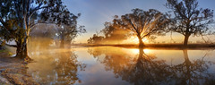 Nalinga Billabong (Explored) (Andrew Fleming Photography) Tags: trees reflection water silhouette fog sunrise canon reflections river landscape iso100 bravo australia andrew victoria explore f16 dookie 7d billabong hdr waterscape fleming andrewfleming goulburnvalley centralvictoria nalinga stunningskies canoneos7d greatershepparton mygearandme mygearandmepremium mygearandmebronze mygearandmesilver mygearandmegold mygearandmeplatinum mygearandmediamond canoneos7d flickrsfinestimages1 flickrsfinestimages2 flickrsfinestimages3 majorplains andrewfleming