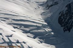 IMG_4585.jpg (MonkeySeeMonkeySnap) Tags: mountain snow honeymoon flight fresh glacier relaxation secluded skiplane mountmckinley mountdenali