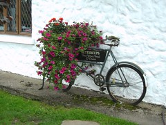 Old bicycle (2) (Scrawb) Tags: glendalough oldbike countywicklow oldbicycle stkevin messengerbike wicklowheatherrestaurant oldpedalcycle