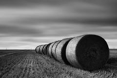 Cotton Reel Fields (Russ Barnes Photography) Tags: longexposure field countryside nikon cotswolds hay agriculture bales d800 tiltshift leefilters 10stopndfilter russbarnes leebigstopper 09ndproglass 09ndsoftgrad nikkor45mmpce