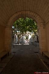 Tamy 11x18#4......Entre de la Chartreuse de Villeneuve lez Avignon (Alphagard) Tags: france landscape uga fr gard v