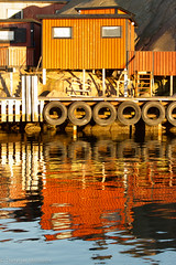 Dockyard and Reflection (ThirtyFive Millimetre) Tags: sunset urban orange abandoned water beautiful yellow clouds marina landscape gold bay harbor pier twilight dock scenery colorful cityscape sweden dusk havana pillar dramatic vivid scene structure quay wharf ripples cuban derelict cloudscape nightfall tattered crumbling ruined shabby