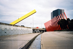 Melbourne Ditch 3 (Thomas Powell) Tags: film bar 35mm buildings milk australia melbourne victoria yashica t4