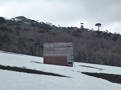casas en araucanía
