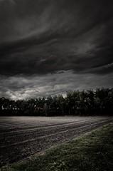 Herbst (Jan Dierkes) Tags: trees clouds landscape natur wolken landschaft bume photografie jandierkes