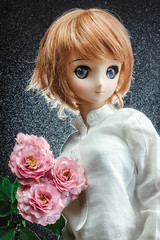 One week, One flower No.26 -Rose- (suzuhico) Tags:  dollfiedream beautydish mistspray lumodi ddh06 oneweekoneflower