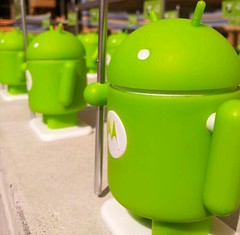 Android invasion, Sydney, Australia
