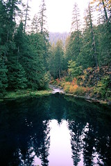 Blue Pool (CleanCletus) Tags: fall oregon forest mckenzie bluepool tamolitch tamolitchpool