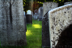 Gravely © (Blackcatatheart) Tags: park summer sunlight texture public grave graveyard grass leaves stone death words leaf moss remember headstone memories engraving memory gravestone land murder rememberance remembered canopy etheral dapple craving remembering dappling dapples markred colesure