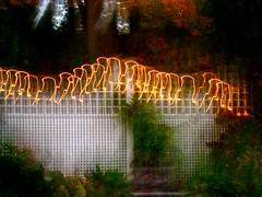 the appletini may explain this (muffett68 ☺ heidi ☺) Tags: fence friday icm intentionalcameramovement fencedfriday