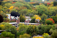 Toy-ronto's Rosedale in October Colours (Katrin Ray) Tags: autumn trees red orange toronto ontario