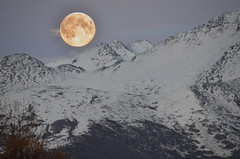 Moon over Anchorage, AK (gerrybuckel) Tags: moon snow mountains nature alaska landscape scenic anchorage lunar