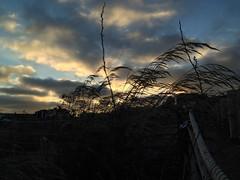 Terranea sunset 1 (evimeyer) Tags: terraneasunset ranchopalosverdes