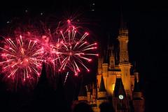 DSC_0528 (briarrose113) Tags: 35mm cinderellacastle d3000 disney florida magickingdom nikon nikond3000 wdw waltdisneyworld wishes fireworks